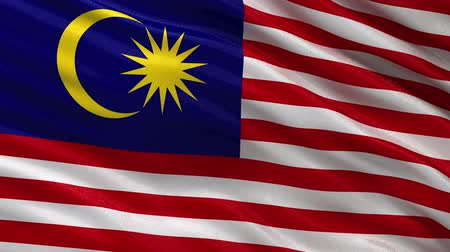 malajské : Flag of Malaysia waving in the wind - seamless loop