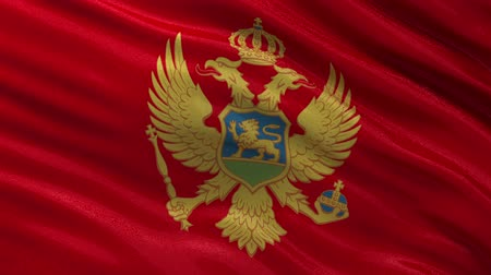 Черногория : Flag of Montenegro waving in the wind - seamless loop Стоковые видеозаписи