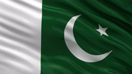 paquistão : Flag of Pakistan waving in the wind - seamless loop
