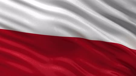 polonês : Flag of Poland gently waving in the wind. Seamless loop with high quality fabric material.