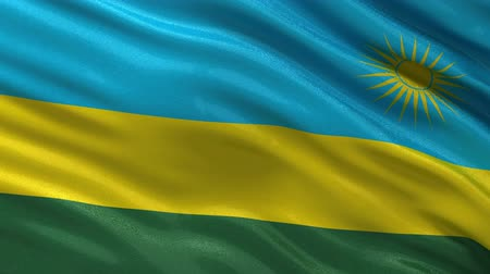 rwandan : Flag of Rwanda gently waving in the wind. Seamless loop with high quality fabric material. Stock Footage