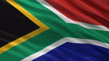 délre : Flag of South Africa gently waving in the wind. Seamless loop with high quality fabric material. Stock mozgókép
