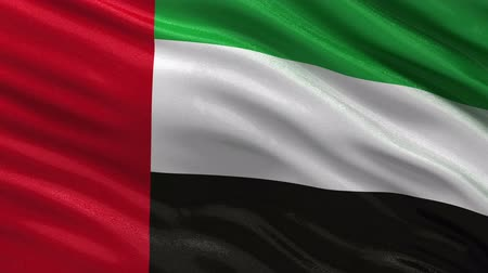 egyesült : Flag of the United Arab Emirates gently waving in the wind. Seamless loop with high quality fabric material.
