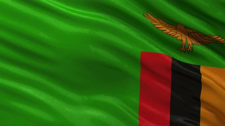zambia : Flag of Zambia gently waving in the wind. Seamless loop with high quality fabric material.