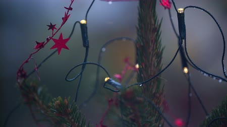 мрачный : Macro shot of outdoor christmas tree with little lights and red star decoration on a gloomy day