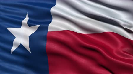 teksas : Realistic Ultra-HD Texas state flag waving in the wind. Seamless loop with highly detailed fabric texture. Loop ready in 4k resolution.