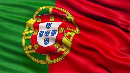portugalsko : Realistic Ultra-HD flag of Portugal waving in the wind. Seamless loop with highly detailed fabric texture. Loop ready in 4K resolution. Dostupné videozáznamy