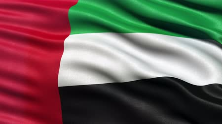 bandeira : Realistic Ultra-HD flag of the United Arab Emirates waving in the wind. Seamless loop with highly detailed fabric texture. Loop ready in 4K resolution.