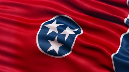 devletler : Realistic Ultra-HD Tennessee state flag waving in the wind. Seamless loop with highly detailed fabric texture. Stok Video