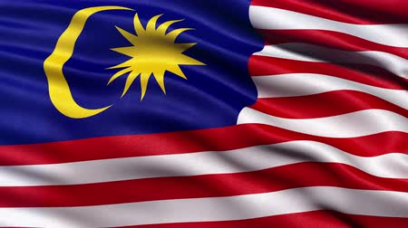 malajské : Realistic Ultra-HD flag of Malaysia waving in the wind. Seamless loop with highly detailed fabric texture. Loop ready in 4K resolution.