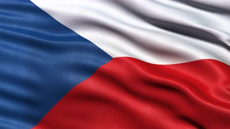 csehország : Realistic flag of Czech Republic waving in the wind. Seamless loop with highly detailed fabric texture. Loop ready in 4K resolution. Stock mozgókép