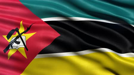 Seamless loop of flag of Mozambique waving in the wind with highly detailed fabric texture.