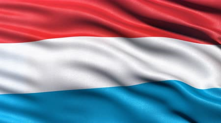 Seamless loop of Luxembourg flag waving in the wind. Realistic loop with highly detailed fabric. Stock Footage