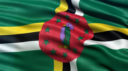 Seamless loop of Dominica flag waving in the wind. Realistic loop with highly detailed fabric. Stock Footage