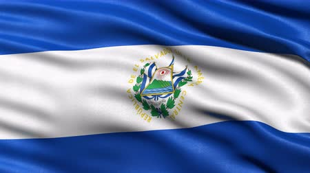 Seamless loop of El Salvador flag waving in the wind. Realistic loop with highly detailed fabric. Stock Footage