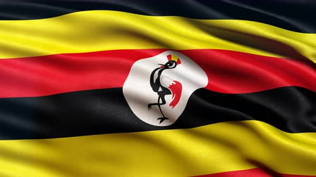 Seamless loop of Uganda flag waving in the wind. Realistic loop with highly detailed fabric.