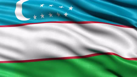Seamless loop of Uzbekistan flag waving in the wind. Realistic loop with highly detailed fabric. Stock Footage