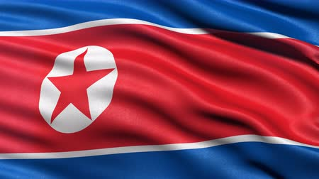 north korean flag : Seamless loop of North Korea flag waving in the wind. Realistic loop with highly detailed fabric. Stock Footage