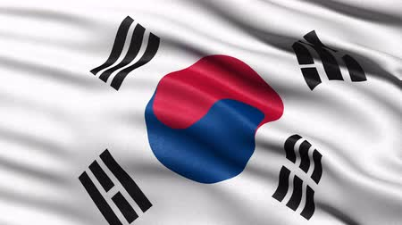 Seamless loop of South Korea flag waving in the wind. Realistic loop with highly detailed fabric.