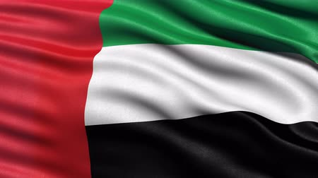 Seamless loop of the United Arab Emirates flag waving in the wind. Realistic loop with highly detailed fabric. Stock Footage