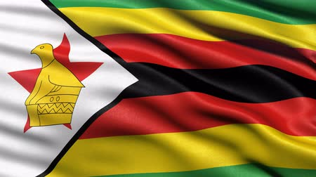 Seamless loop of Zimbabwe flag waving in the wind. Realistic loop with highly detailed fabric.