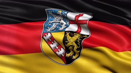 Seamless loop of Saarland state flag in Germany waving in the wind. Realistic loop with highly detailed fabric.