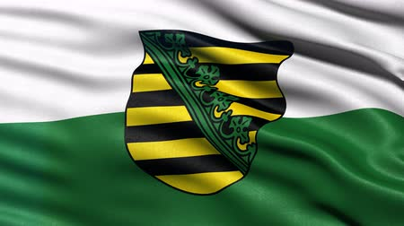 Seamless loop of Saxony state flag in Germany waving in the wind. Realistic loop with highly detailed fabric.