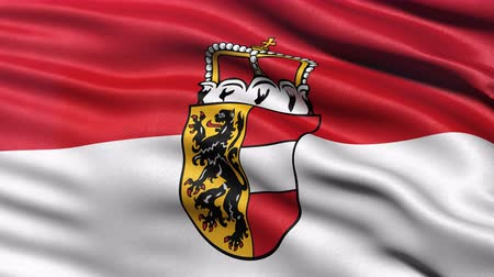 Seamless loop of Salzburg state flag in Austria waving in the wind. Realistic loop with highly detailed fabric. Stock Footage