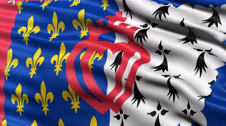 Seamless loop of Pays de la Loire regional state flag in France waving in the wind. Realistic loop with highly detailed fabric.