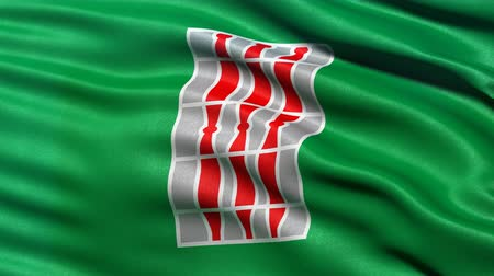 Seamless loop of Umbria, the regional flag in Italy waving in the wind. Realistic loop with highly detailed fabric. Stock Footage