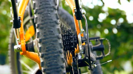 eco tourism : Traveling and camping bicyclist. Dolly. Stock Footage
