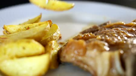 fritos : Professional prepared roasted pork meal with grilled small cuts potato. Professional lighting and panning.