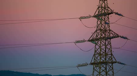 marco internacional : Colorful electrical tower