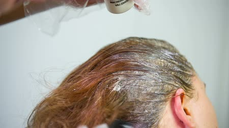 краситель : Hairdresser Applying Hair Color with Brush