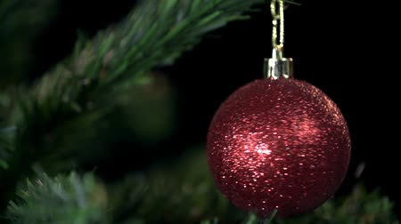 деревья : Red ornament on Christmas tree spinning