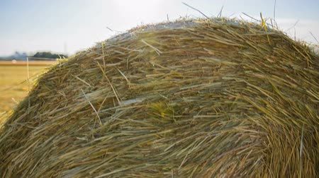 préri : Hay Bale From Bellow to Above Jib Shot Stock mozgókép