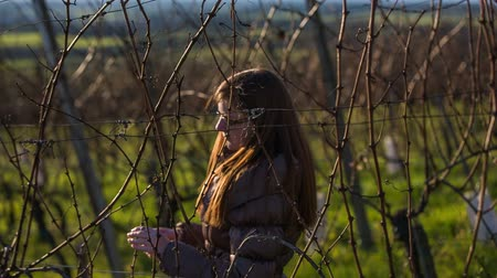 еще : Female checking vineyard branches. Medium shot on vineyard branches in winter while not yet growing, winegrower checking branches for their health.
