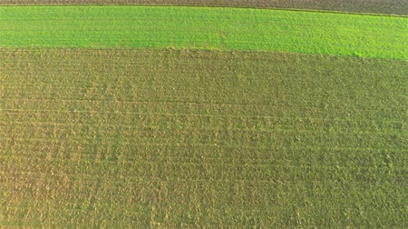 talaj : Flying fast over green farm fields 4K. Aerial fly above soil with planted vegetables and some empty soil.
