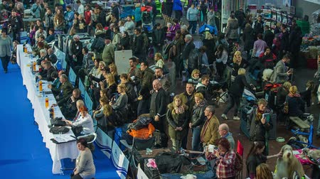 výstava : LJUBLJANA, SLOVENIA - JANUARY 2015: Crowd of visitors watching dog exhibition. Above shot of people standing behind the fence watching event in showroom at dog exhibition. Dostupné videozáznamy