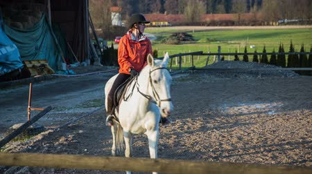 lovas : Horse rider passing the camera. Jockey training white pedigree horse inside the fence outside on a sunny weather with green fields in background.