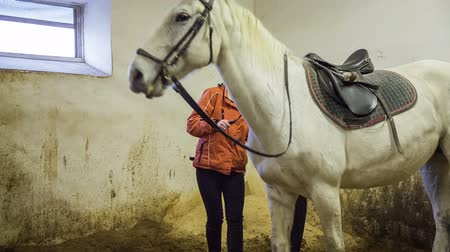 dizgin : Removing saddle from white horse. Woman in orange jacket removing brown saddle from white horse after training.