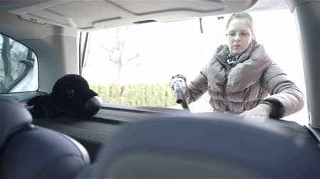 black dirt : Woman vacuuming car back shelf 4K. Female person with glasses cleaning car with vacuum cleaner, removing dirt from shelf in back part of car, black dog toy on shelf.