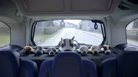 straight road : Plush toys on back shelf of car while driving 4K. Wide shot of back shelf of big family car, with plush toys placed in straight line looking at camera while travel on road.