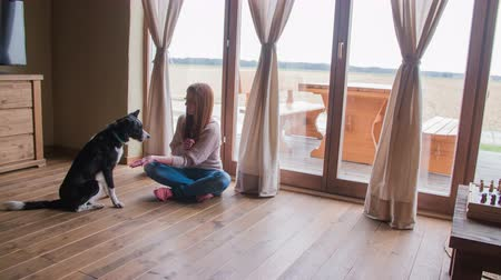 подготовке : Person teaches puppy to sit 4K. Woman teaching young dog to be obidient, making him sit on floor. Big terrace windows in background. Retro living room.