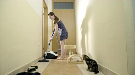 Attractive female person cleaning cats hallway . Woman vacuuming floor at home, moving around kittens scratch post. Little cat observing and moving around. Big female shadow on wall.