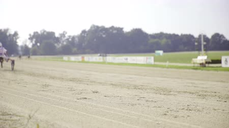 sulky : Harness racer out of focus on hippodrome . Static shot of footsteps in hippodrome track sand while a competitor in background passes by.