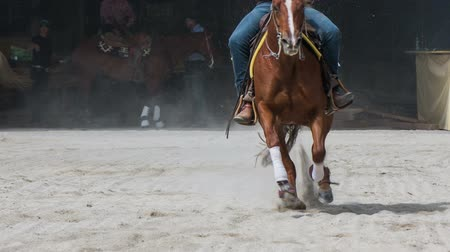 Rider in yellow shirt speeding horse and slide stopping. Western rider with hat and riding quarter brown horse in manege, speeding towards the camera making hard brake in sand.