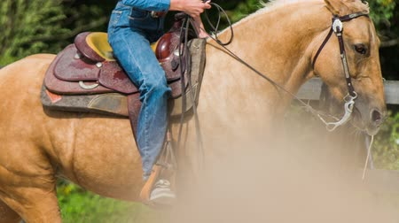 верхом : Horse riding in circle close up. Western female person in saddle speeding on light brown horse making a turn towards the camera.