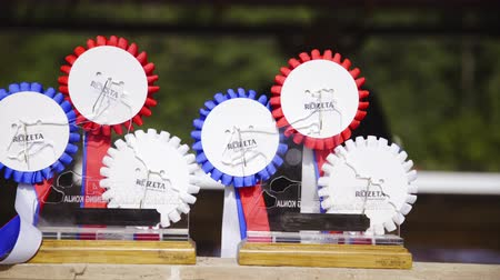 Reining horse competition rosettes close up 4K. Rosette prizes waiting for winner of western reining national competition in SIRHA. Stock Footage