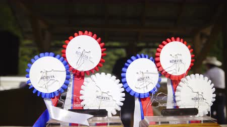 Sliding over SIRHA reining rosettes 4K. Rosette prizes waiting for winner of western reining competition. Stock Footage